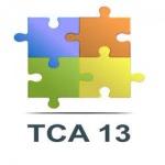 TCA 13